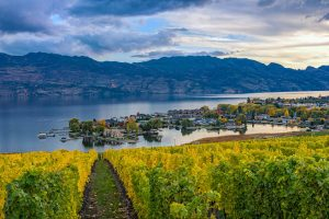 View of Kelowna from an orchard